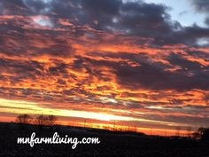A beautiful sunrise in southern Minnesota. Country living at it's best. You can't beat the views on the farm. Modern Agriculture, Agriculture Farming, Picture Show, Picture Video, Farm Pictures, Farms Living, Beautiful Sunrise, Farm Life, Country Living