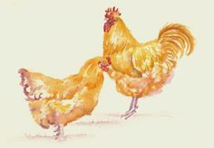 """ORIGINAL WATERCOLOUR PAINTING: HENS / CHICKENS / FOXES: """"BUFF ORPINGTONS"""" 