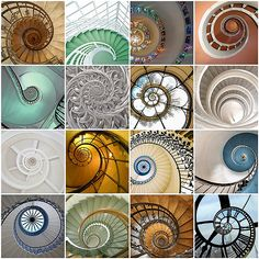 35 New Ideas For Stairs Garden Architecture Spiral Staircases Patterns In Nature, Textures Patterns, Spirals In Nature, Fractals In Nature, Instalation Art, Spirograph, Golden Ratio, Sacred Geometry, Geometry Art