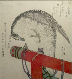 Totoya Hokkei, Japanese (1780 - 1850). FALCON ON PERCH, Print, Surimono, Edo period, 1615-1868, Ink on paper,  Harvard Art Museums/Arthur M. Sackler Museum.