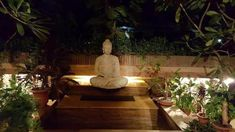 Browse from largest Indian buddha decor photo collection; Buddha Decor, Photos, Design, Fonts, Pictures