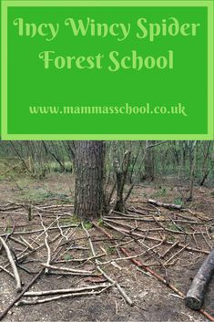 Incy Wincy Spider forest school, learn spiders outdoor learning nature learning mini beasts www. Forest School Activities, Nature Activities, Kindergarten Activities, Outdoor Activities, Stem Activities, Outdoor Education, Outdoor Learning, Early Education, Outdoor Classroom
