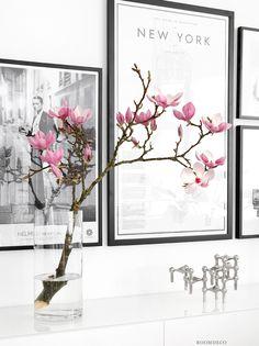 Underbara Magnolia! Häromdagen köpte jag en Magnolia kvist i blomsteraffären i Åsa och idag blommar och doftar den helt fantastiskt. Kunde ju inte låta bli att ta några bilder när den blommar så här…