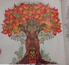 Floresta encantada/ jardim secreto Árvore