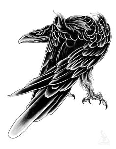 40 pages of Crow Illustrations by Ben Lucas. All images featured in this ebook are under copyright and can not be reproduced or sold as your own. These images are NOT ROYALTY FREE. Crow Art, Raven Art, Bird Art, Hand Tattoos For Guys, Small Tattoos For Guys, Celtic Raven Tattoo, Crows Drawing, Fuchs Illustration, Raven And Wolf