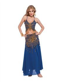 Butterfly Blue Belly Dancer Adult Womens Costume http://www.24HourHalloween.com