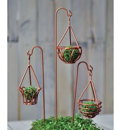 THIS LOOKS EASY ENOUGH TO MAKE WITH WIRE 16486 Hanging Basket Garden, Hanging Baskets, Fairy Gardening, Plant Hanger, Terrarium, Fairy Garden Supplies, Terrariums, Fairies Garden