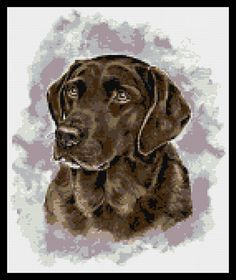 Chocolate labrador counted cross stitch kit on Etsy, $26.90