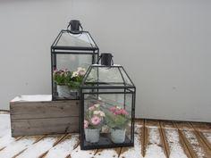 Moseplassen - livet i hagen | Bruk lykten til blomster, og gjør mer ut av lite!