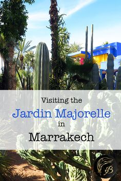 The Jardin Majorelle is undoubtably a highlight of Morocco. The garden is a green oasis within the hot, dry city of Marrakech.