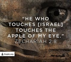 """) that toucheth you (Israel) toucheth the apple of his(God's) eye."""" (Zechariah We MUST stand with Israel! Bible Scriptures, Bible Quotes, Powerful Scriptures, Bible Prayers, Biblical Quotes, Faith Quotes, Lord Of Hosts, Important Quotes, Torah"""