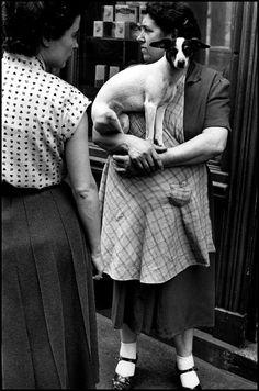 Elliott Erwitt :: Paris, France, 1952 [Magnum Photos] / more [+] by this photographer