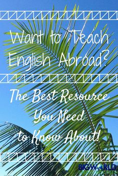 Want to Teach English Abroad? The Best Resource You Need to Know About! {Big World Small Pockets}