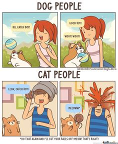 Community Post: How To Be A Cat Person While Actually Hating Cats