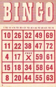 Free Bingo Card Printables - 4 stykes to choose from at www.247moms.com
