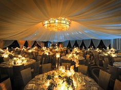 wedding reception te