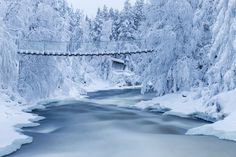 The snow-capped Kitkajoki river in Finland. Photo by Jari Ehrstrom Beautiful Landscape Photography, Beautiful Landscapes, Nature Photography, Winter Landscape, Urban Landscape, Winter Snow, Winter White, Snow Images, Tree Forest