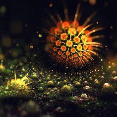 Lindelokse: fractal illustrator | 3D Apophysis Flames