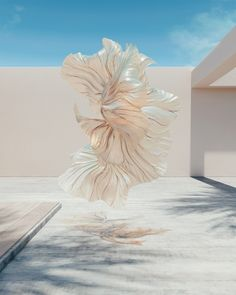 James Owen is making some pretty cool art inspired by the seemingly incongruous combination of mathematic principles and flowing natural forms. Chris Labrooy, Render Design, 3d Design, Event Design, Beach Wedding Jewelry, 3d Artist, Triptych, New Artists, Tag Art
