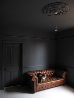 Plafond sombre Farrow & Ball Down Pipe (ceiling too) - looks great with the saddle brown chesterfiel Dark Interiors, Colorful Interiors, Zigarren Lounges, Dark Ceiling, Black Ceiling Paint, Ceiling Rose, Black Rooms, Dark Grey Rooms, Dark Walls