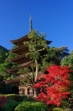 Autumn Japanese temple
