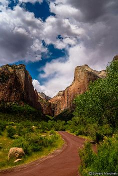 Zion Canyon Utah: Weathered Road of Scenic Drive