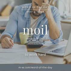 The #WordOfTheDay is moil, as in the phrase 'toil and moil'. #merriamwebster…