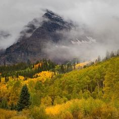 First snow of season dusts the Maroon Bells in Aspen | Real Aspen