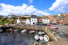 Fancy a lobster roll, spotting some puffins and a stroll along a beautiful beach? Here is why you should visit the East Neuk of Fife.