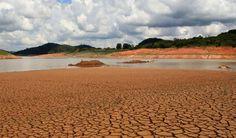 Dicas para evitar a seca