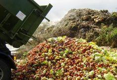desperdicio-alimentos-comida Una web y una app para compartir los alimentos que no comemos No es una página comercial ni de ventas: se entrega gratis, se regala y no contempla transacciones económicas. Si se entrega comida a otra persona y se evita que vaya a la basura En el mundo se desperdician cada año 1.300 toneladas de alimentos, que acaban en la basura