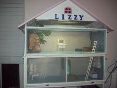 Zoe's pet bearded dragon, Lizzy's house, repurposed from dollhouse book shelf. Bearded Dragon Cage, Bearded Dragon Habitat, Rabbit Cages, Lizard Cage, Les Reptiles, Amphibians, Reptile Terrarium, Terrariums, Easy Pets