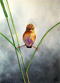 Art Collection by Nina Domaschko
