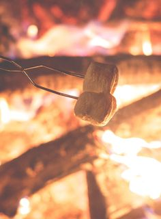Vegan Camping Food Ideas from Running on Real Food | plan a plant-based camping trip