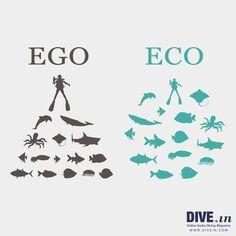rispettiamoci #scubadiving #underwater #sealife #Animalista #eco