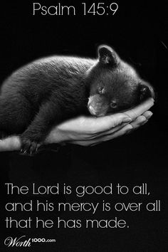 Psalm 145:9 The Lord is good to all,     and his mercy is over all that he has made.