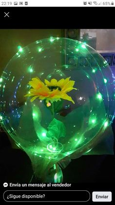 Aquarium, Flowers, Aquarius, Fish Tank