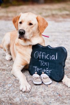 Baby announcement photos