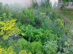 Autor: Chokma Herb Garden, Garden Design, Herbs, Plants, Gardening, Author, Lawn And Garden, Herbs Garden, Herb