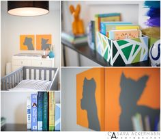 Sara Ackermann Photography    Modern boys nursery with paintings of dogs (the family pets), grey crib, white walls, and West Elm hanging pendant.