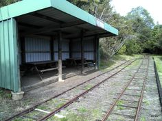 Tram station on Waitakere Tramline Walk, overlooks the grassed 'Picnic Flat'.