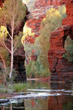 Gorge, in the Karijini National Park, Western Australia.Kalamina Gorge, in the Karijini National Park, Western Australia. Landscape Photos, Landscape Photography, Nature Photography, Australian Photography, Photography Tips, Western Australia, Australia Travel, Australia Photos, Perth Australia