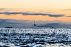 The Statue Of Liberty in the rolling fog