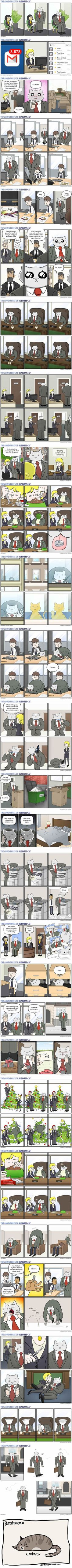 27 comics showing this is how your office would look if your boss was a cat - Tap the link now to see all of our cool cat collections!