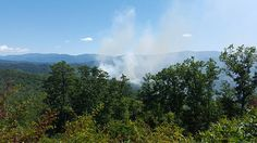 wildfire near Abrams Creek area of the National Park Happy Valley, Acre, Traveling By Yourself, National Parks, Mountains, Bergen