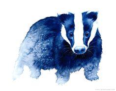 Badger Innocence in blues - modern watercolour animal art - A4 archival giclee art print
