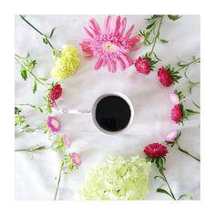 Tavasz. http://www.e-coffee.dxn.hu/