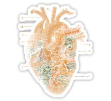 I`ll Find you - Love Travel Heart Wanderlust Sticker Anatomical Heart, Sticker Design, Finding Yourself, Wanderlust, Stickers, Travel, Viajes, Destinations, Traveling