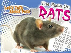The Facts On Rats / David Armentrout