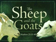 11 Sheep and Goats Parable ideas | goats, sheep, parables